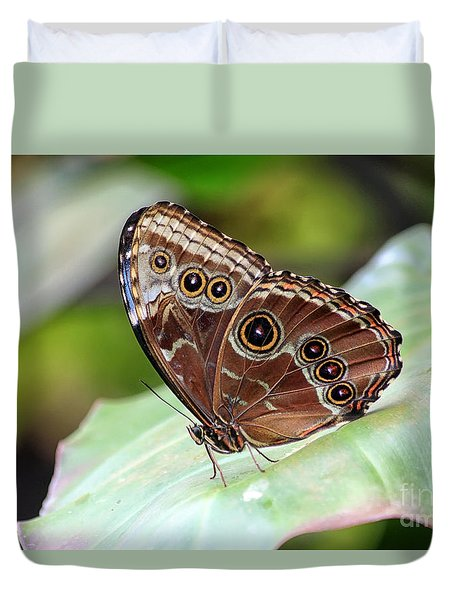 Duvet Cover featuring the photograph Blue Morpho Butterfly by Teresa Zieba