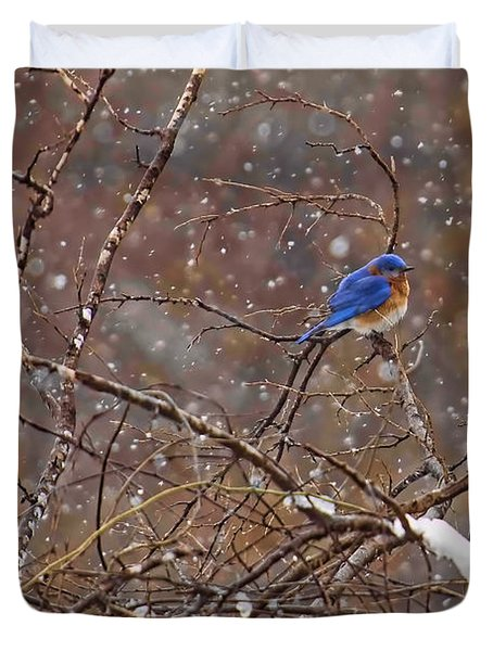 Duvet Cover featuring the photograph Blue Norther by Gary Holmes