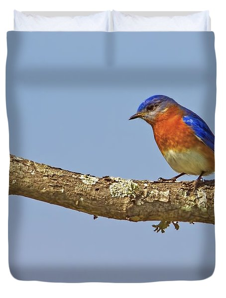 Blue On Blue Duvet Cover by Gary Holmes