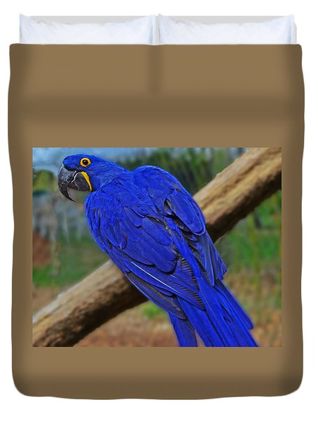 Duvet Cover featuring the photograph Blue Parrot by Jack Moskovita