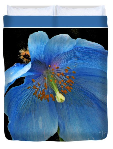 Blue Poppy On Black Duvet Cover by Chris Anderson
