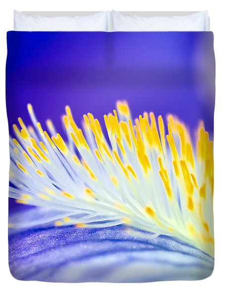 Blue Rapsody Duvet Cover