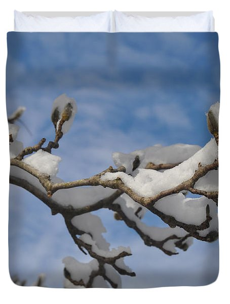 Blue Skies In Winter Duvet Cover by Bill Cannon
