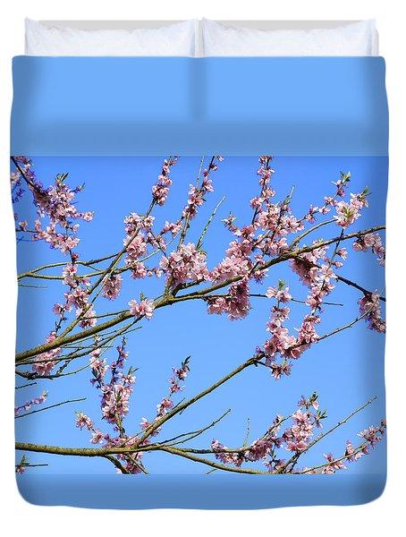 Blue Sky And Pink Blossom. Duvet Cover