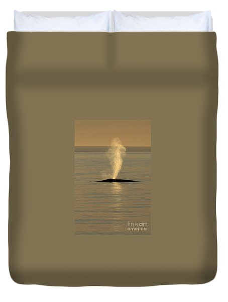 Duvet Cover featuring the photograph Blue Whale At Sunset In Monterey Bay California  2013 by California Views Mr Pat Hathaway Archives