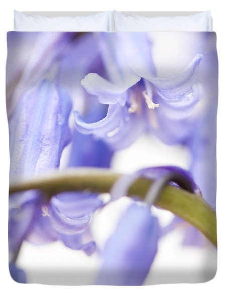 Bluebell Abstract Iv Duvet Cover by Anne Gilbert