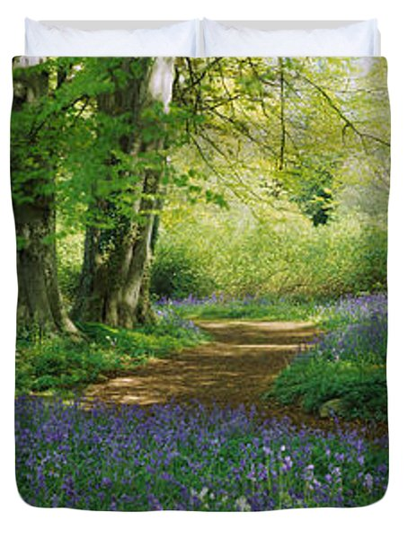 Bluebells In A Forest, Thorp Perrow Duvet Cover