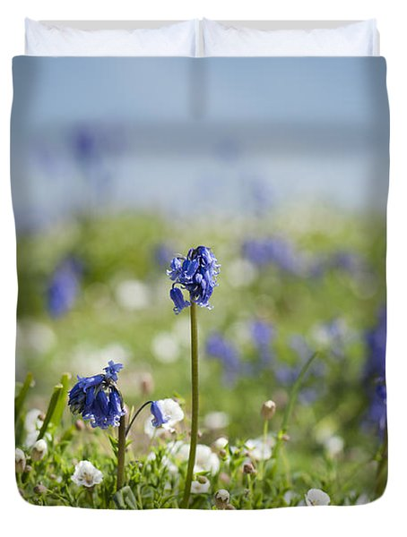 Bluebells In Sea Campion Duvet Cover by Anne Gilbert