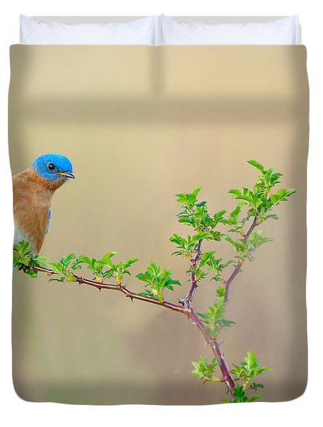 Bluebird Breeze Duvet Cover