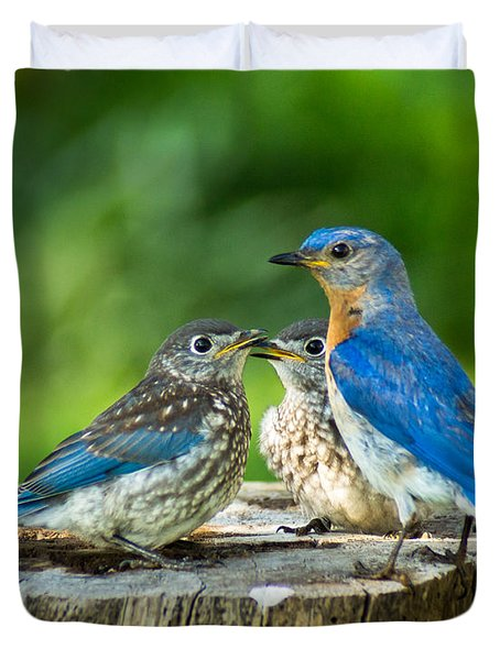 Bluebird - Father And Sons Duvet Cover