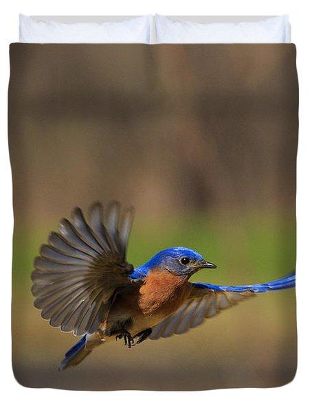 Bluebird In Flight Duvet Cover