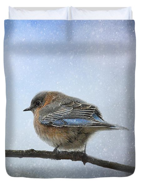 Bluebird In The Snow Duvet Cover by Jai Johnson