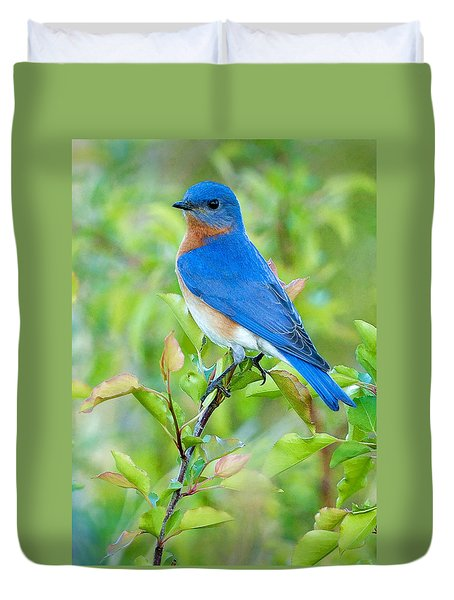 Bluebird Joy Duvet Cover