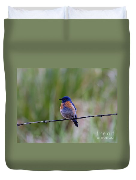 Bluebird On A Wire Duvet Cover