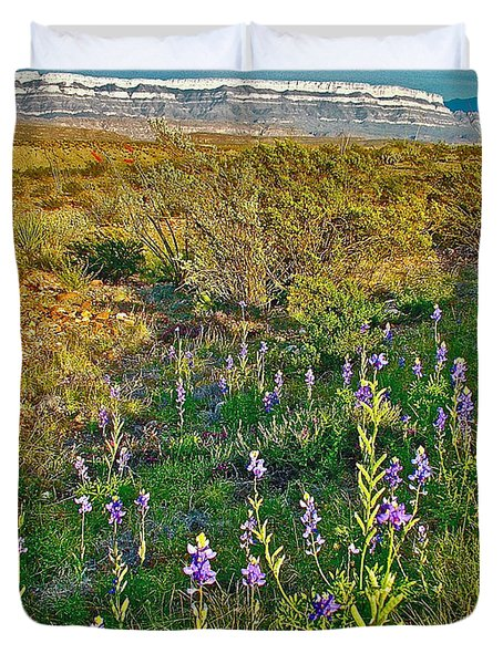 Bluebonnets And Creosote Bushes In Big Bend National Park-texas Duvet Cover