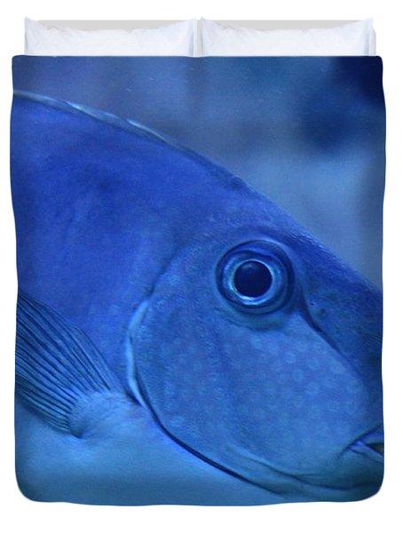 Bluespine Unicorn Fish Duvet Cover by Karon Melillo DeVega