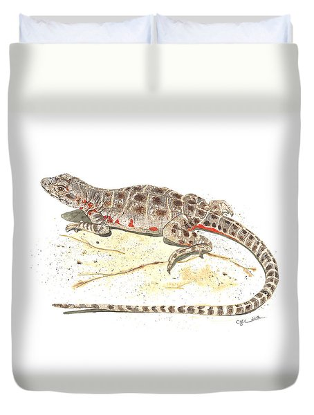 Blunt-nosed Leopard Lizard  Duvet Cover by Cindy Hitchcock