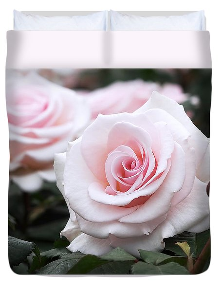 Blush Pink Roses Duvet Cover by Rona Black