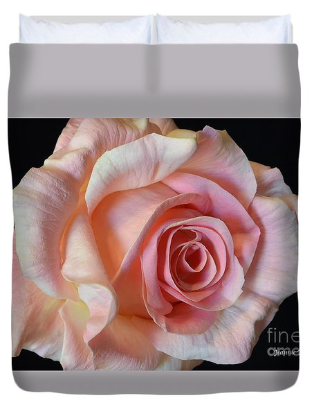Duvet Cover featuring the photograph Blushing Pink Rose by Jeannie Rhode