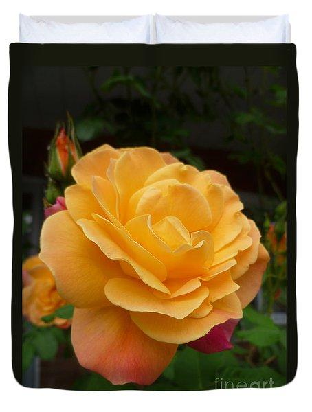 Duvet Cover featuring the photograph Blushing Rosalina by Lingfai Leung