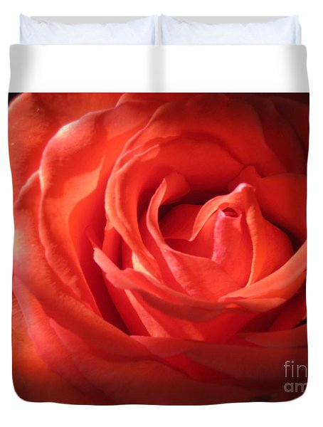 Blushing Orange Rose 1 Duvet Cover