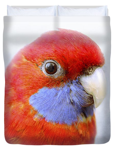 Bobby The Crimson Rosella Duvet Cover by Terri Waters