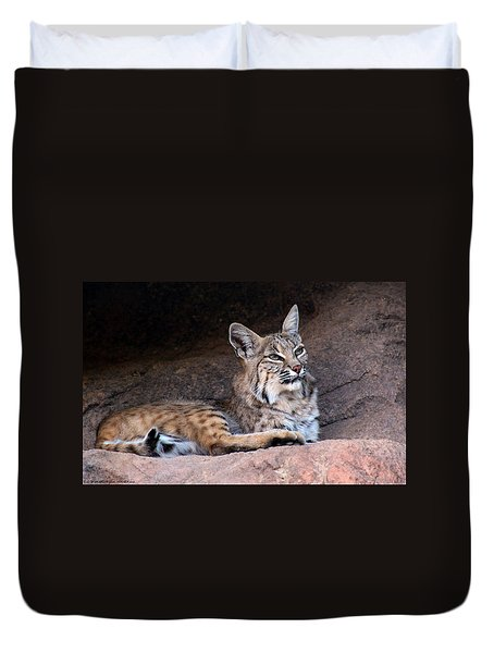 Duvet Cover featuring the photograph Hmm What To Do by Elaine Malott