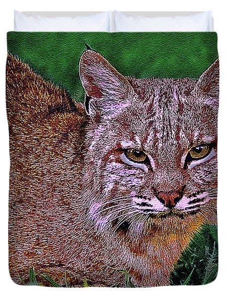Bobcat Sedona Wilderness Duvet Cover by Bob and Nadine Johnston