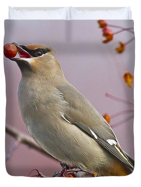 Bohemian Waxwing With Fruit Duvet Cover