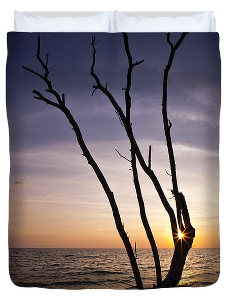 Duvet Cover featuring the photograph Bonita Beach Tree by Bradley R Youngberg