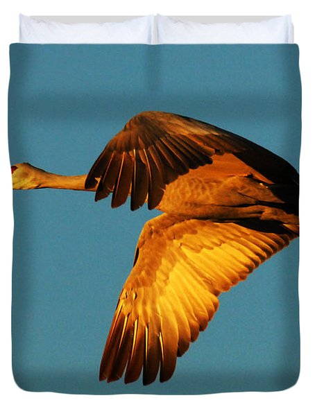 Bosque Del Apache Sandhill Crane Golden Light Duvet Cover by Bob Christopher