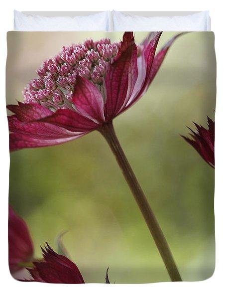 Botanica Duvet Cover