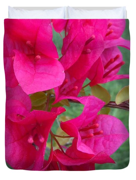 Bougainvillea Dream #2 Duvet Cover by Robert ONeil