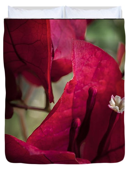 Duvet Cover featuring the photograph Bougainvillea by Steven Sparks