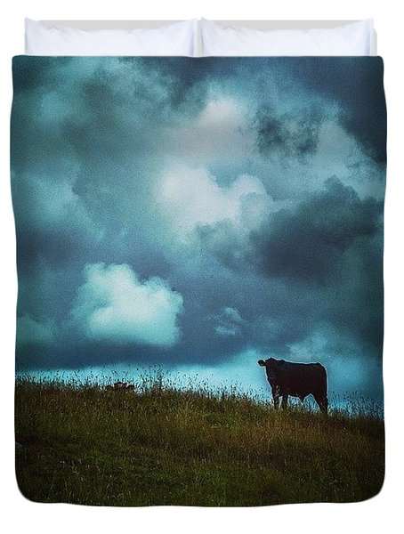 Bovine Encounters Duvet Cover