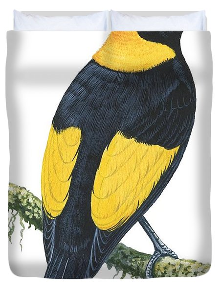 Bowerbird  Duvet Cover by Anonymous