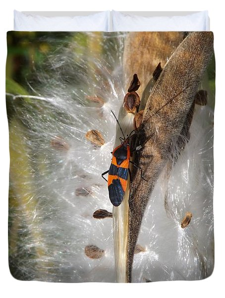 Boxelder On Butterfly Milkweed 2 Duvet Cover by Sara  Raber