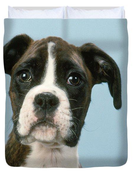 Boxer Dog, Close-up Of Head Duvet Cover by John Daniels