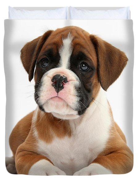 Boxer Puppy Duvet Cover by Mark Taylor