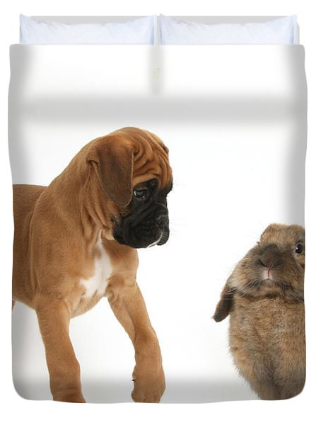 Boxer Puppy With Lionhead-lop Rabbit Duvet Cover by Mark Taylor