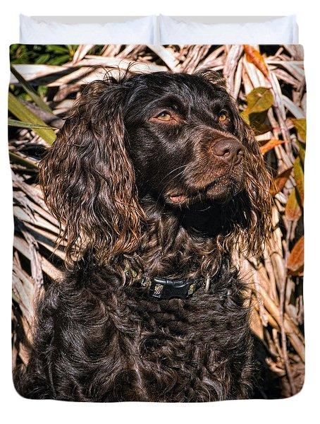 Boykin Spaniel Portrait Duvet Cover