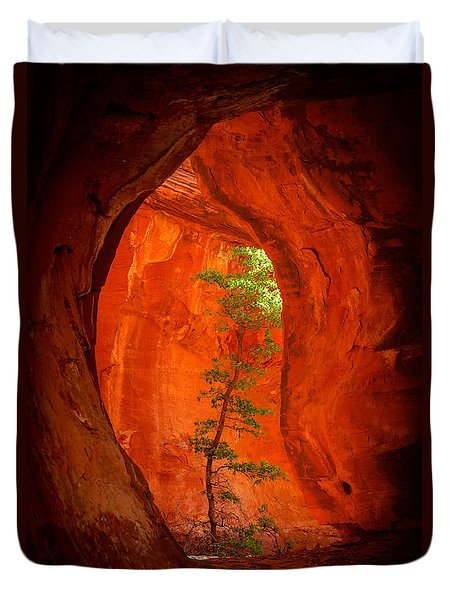 Boynton Canyon 04-343 Duvet Cover by Scott McAllister