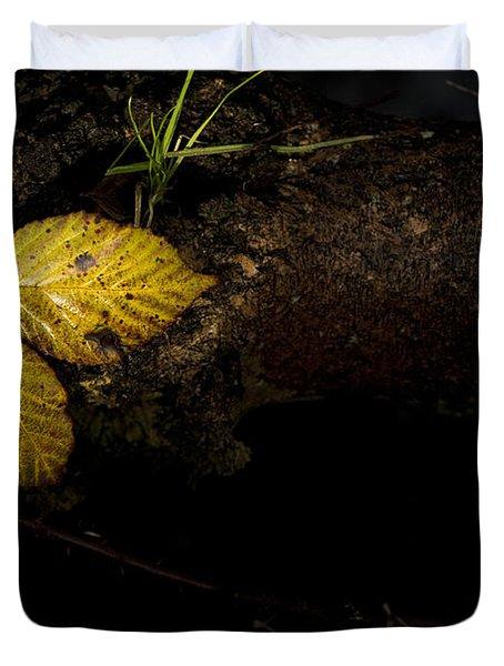 Bramble Tree Duvet Cover by Anne Gilbert