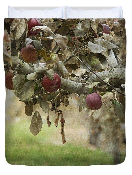 Branch Of An Apple Tree Duvet Cover