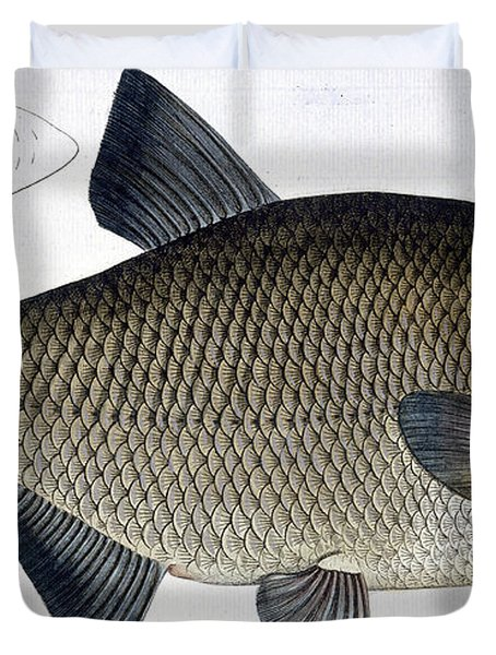 Bream Duvet Cover by Andreas Ludwig Kruger