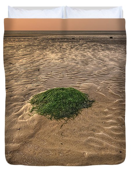 Breeze Of Dawn Duvet Cover by Evelina Kremsdorf