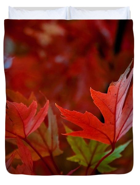 Brilliant Red Maples Duvet Cover by Linda Unger