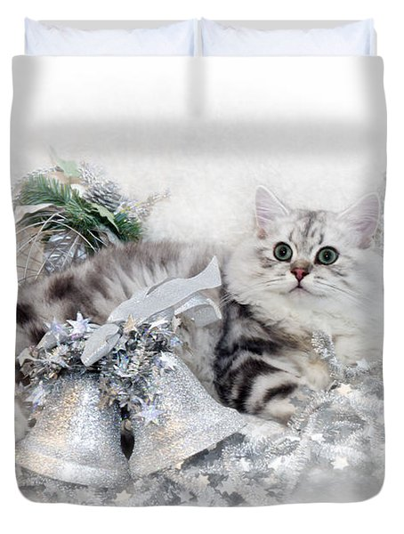 British Longhair Cat Christmas Time Duvet Cover by Melanie Viola