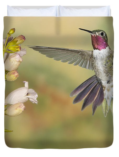 Broad Tailed Hummingbird 2 Duvet Cover