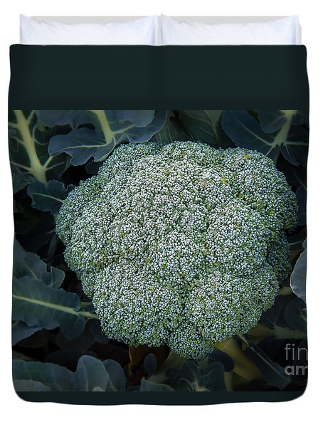 Broccoli Duvet Cover by Robert Bales